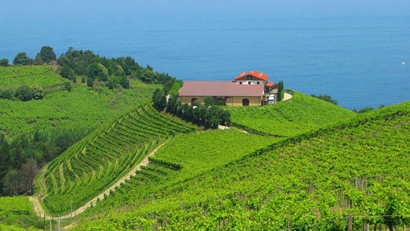 San Sebastian Winery Restaurant